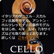 輸入弦楽器